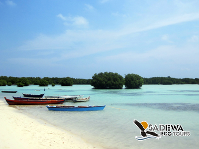 Paket Wisata Pulau Pari <br> 2 Hari 1 Malam