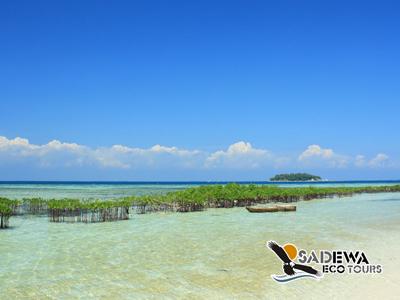 Paket Wisata Pulau Pramuka <br>2 Hari 1 Malam